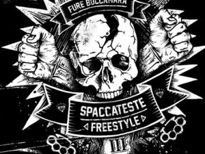SPACCATESTE FREESTYLE III LOGO